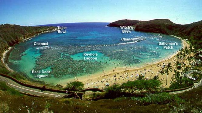 Source: aloha-hawaii.com